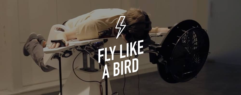 Fly Like a Bird
