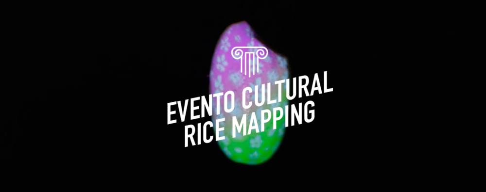 Rice Mapping